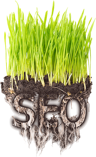Grassroots SEO - Planting seeds for a fertile crop