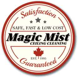Magic Mist Ceiling Cleaning